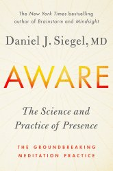 Aware The Science and Practice of Presence by Daniel Siegel, MD
