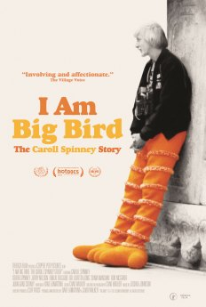i am big bird dvd